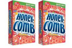 HoneycombStraw422