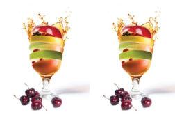 FruitSmart422