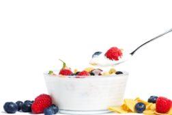 Edlong yogurt dairy cereal