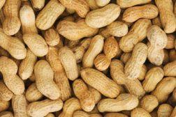 Peanuts feat