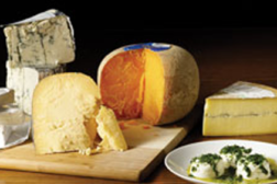 cheeses, dairy
