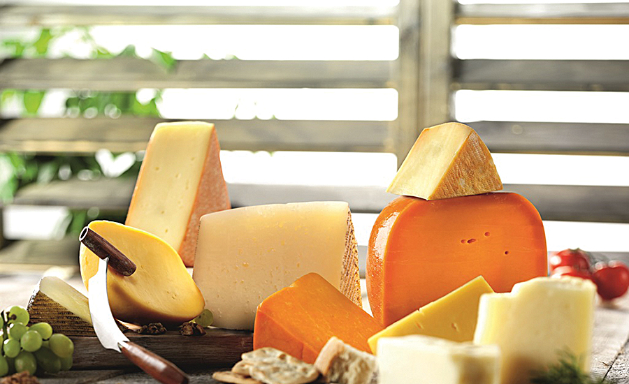 Cheese cultures meet multiply divergent production demands