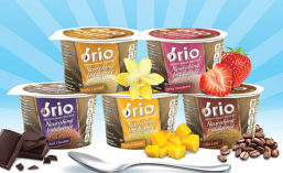 Brio is a low-sugar frozen dairy dessert brand