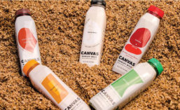Canvas Barley Milk Flavors