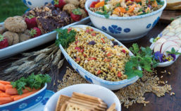 Array of Starch-based Dishes from Kamut