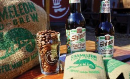 Shiner Chameleon cold brew coffee ale
