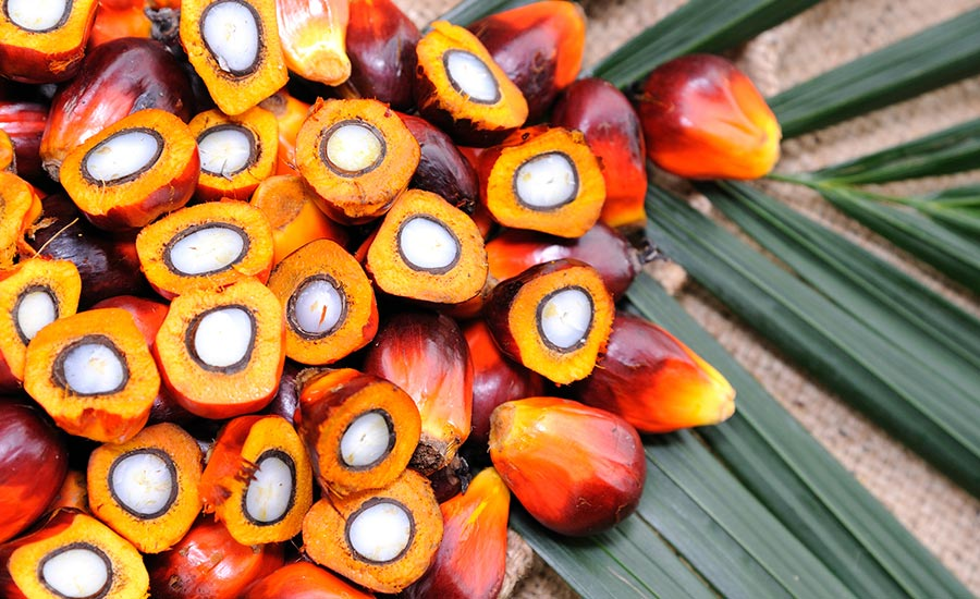Culinologists and nutritionists are embracing truly sustainable palm oil, especially red palm oil