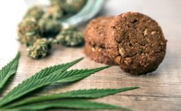 Cannabis-Infused Edibles