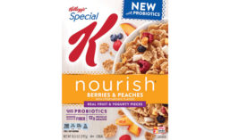 Kellogg's Special K Nourish Cereal