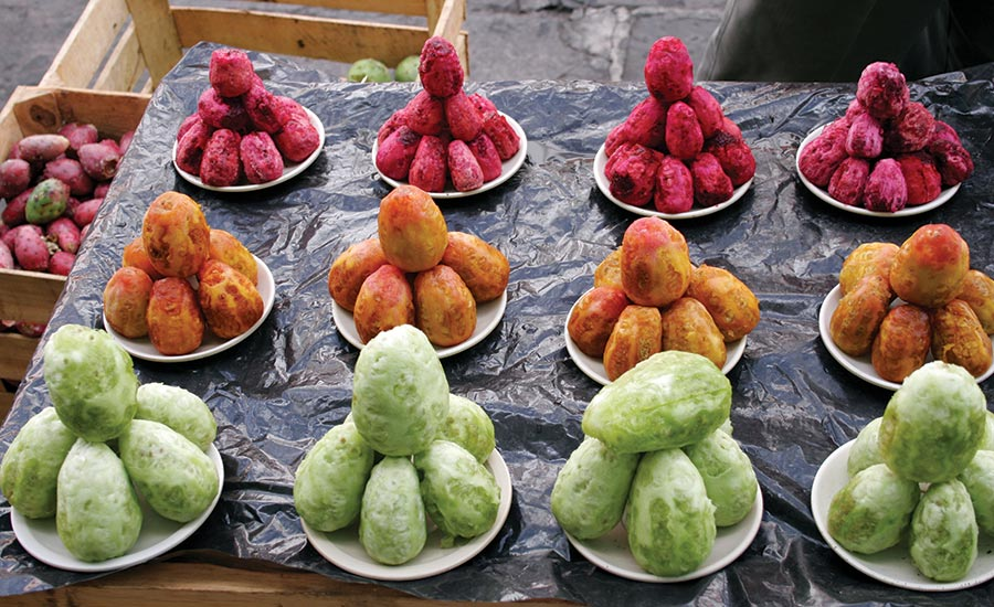 Different Colors of Prickly Pears