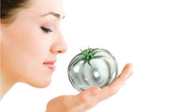 Woman Holding Silver Tomato