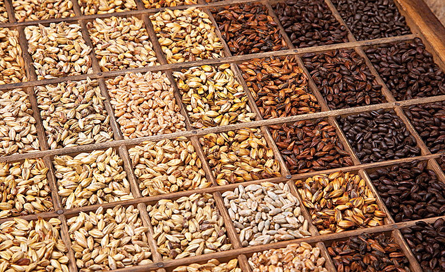 Malts and malt extracts used in craft beers are also multifunctional ingredients for food