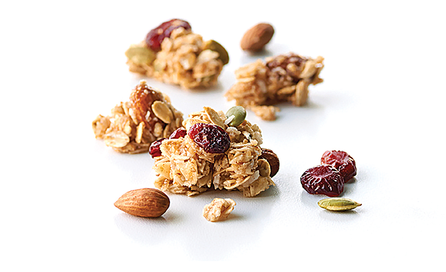 Van's Foods Cranberry Almond and Blueberry Walnut soft-baked granola bites