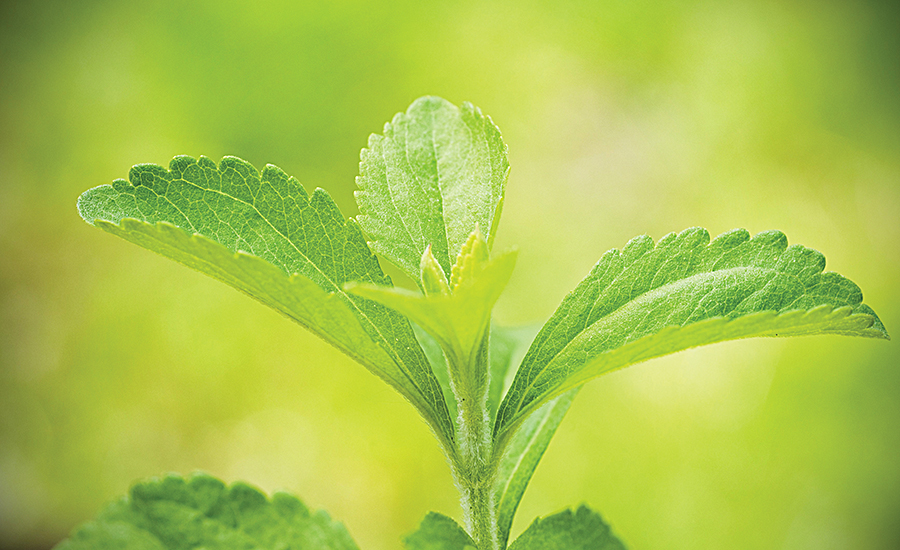 Stevia, a naturally derived, high-intensity sweetener