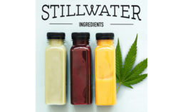 Stillwater Ingredients Water-Soluble CBD