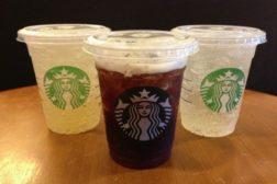 Starbucks sodas feat