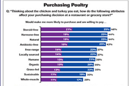 PURCHASING POULTRY-Feature
