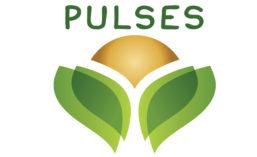 Pulses_900.jpg