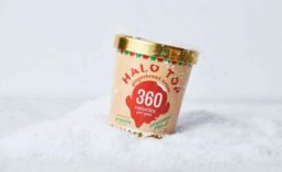 HaloTop_Ginger_900