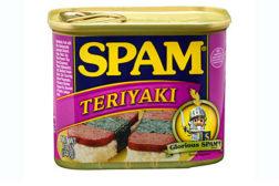 SpamTeriyaki422