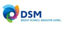 DSM_Logo_900