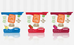 Good Karma Foods Dairy Free Yogurts