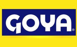 Goya_900