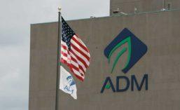 ADM_Building17_900