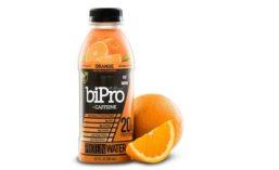 BiPro17_900