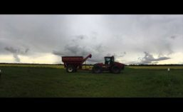 RiceHarvest18_900