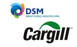 DSMCargill_900