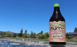 HummKombucha_900