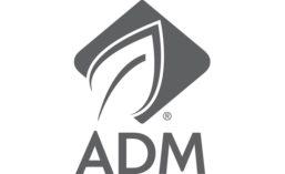 ADM_gray_900