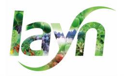 Layn logo 2