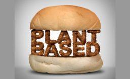 PLT_PlantBased_900