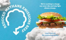 BK_Methane_Emissions_900