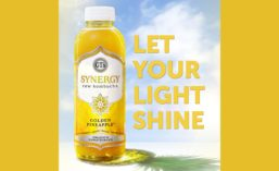 Synergy_Pineapple_900