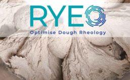 AB_Enzymes_RyeDough_900