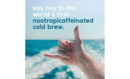 Nootropic_Pivot