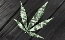 Marijuana Leaf Dollar Bill Cut-out