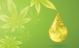 Cannabis Leaf Droplet