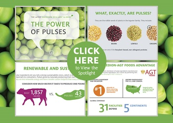 Ingredion Interactive Product Spotlight