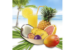WILD, Tropical Fruits, flavors