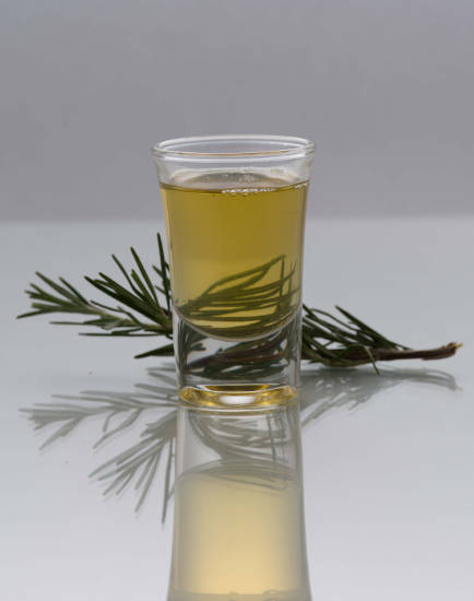 Rosemary extract utilized in natural antioxidant solutions such as OxiKan