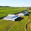 Soy Farmer Field