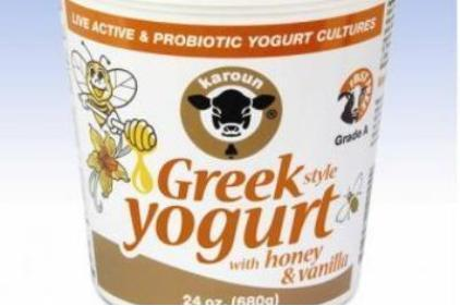 Karoun-Greek-Yogurt-feat1.jpg